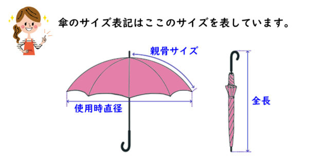 傘のサイズ親骨