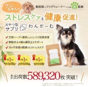 わんかーむ【オッたまげ体験談】愛犬悩み相談室有~解約しばり無し?